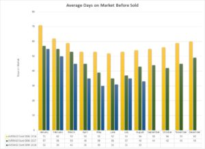 Market Report – August 2018